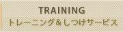 トレーニング&しつけサービス